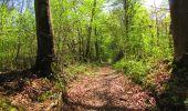 Randonnée A pied VILLERS-COTTERETS - le GR11A  dans la Forêt de Retz  - Photo 132