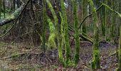 Randonnée Marche SOMMEVAL - Sommeval Puiseaux 20km le 04/02/2021 - Photo 5