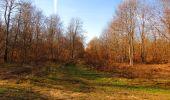 Trail On foot VIEUX-MOULIN - en forêt de Compiègne_23_la Grotte des Ramoneurs_le Mont Berny - Photo 71