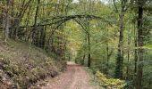 Randonnée Marche La Roche-en-Ardenne - Ramee  - Photo 6