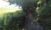 Randonnée Marche Dalhem - dalhem grand tour - Photo 34