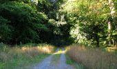 Trail Walk DAMPLEUX - en forêt de Retz_80_sur la Route Tortue et la Route Droite - Photo 58