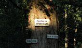 Trail Walk DAMPLEUX - en forêt de Retz_80_sur la Route Tortue et la Route Droite - Photo 68