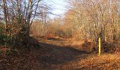 Trail Walk PIERREFONDS - en forêt de Compiègne_24_Tournantes sur le Voliard et sur la Fortelle_chaussée Brunehaut - Photo 109
