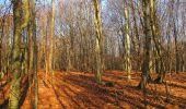 Trail On foot VIEUX-MOULIN - en forêt de Compiègne_23_la Grotte des Ramoneurs_le Mont Berny - Photo 106