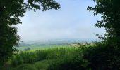 Randonnée Marche SAINT-POIS - Tours de la vallée de la sée - Photo 13