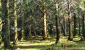 Randonnée Marche SAINT-PIERRE-BELLEVUE - cent pas beauvais - Photo 2