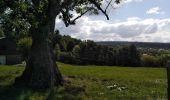 Randonnée Marche Erezée - promenade des soupirs Erezée  - Photo 17