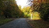 Trail Walk RETHEUIL - en forêt de Retz_76_dans les forêts de Retz et de Compiègne - Photo 72