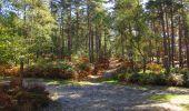 Trail Walk LONGPONT - en forêt de Retz_29_Longpont_la cave du Diable_A - Photo 40