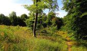 Randonnée Marche SAINT-JEAN-AUX-BOIS - en forêt de Compiègne_6_les Grands Monts_la route tournante sur la tête St-Jean - Photo 179