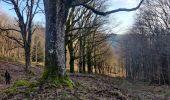 Randonnée Marche BLANCHERUPT - 2020-02-15 Marche Blancherupt Perheux - Photo 1