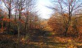 Trail Walk PIERREFONDS - en forêt de Compiègne_24_Tournantes sur le Voliard et sur la Fortelle_chaussée Brunehaut - Photo 115