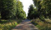 Trail Walk DAMPLEUX - en forêt de Retz_80_sur la Route Tortue et la Route Droite - Photo 197