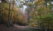 Trail Walk CRUIS - Jas Neuf, Jas pierrefeu et Jas Roche - Photo 3