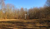 Trail Walk PIERREFONDS - en forêt de Compiègne_24_Tournantes sur le Voliard et sur la Fortelle_chaussée Brunehaut - Photo 88
