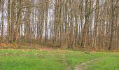 Randonnée A pied VILLERS-COTTERETS - le GR11A  dans la Forêt de Retz  - Photo 23