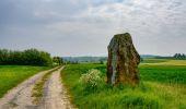 Randonnée Marche Couvin - RB-Na-27_Entre Eau Blanche et Eau Noire - Photo 2