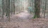 Randonnée Marche NIEDERBRUCK - niederbruck lochberg circuit - Photo 10