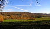 Trail On foot VIEUX-MOULIN - en forêt de Compiègne_23_la Grotte des Ramoneurs_le Mont Berny - Photo 50