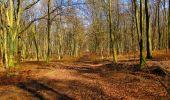 Randonnée A pied VILLERS-COTTERETS - le GR11A  dans la Forêt de Retz  - Photo 97