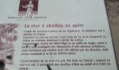 Randonnée Marche CORNILLON-CONFOUX - Cornillon Confoux : Bories et mur des abeilles - Photo 1