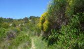 Randonnée A pied Coustouge - COUSTOUGE: Au-dessus de Coustouge - Photo 10
