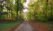 Trail Walk SAINT-JEAN-AUX-BOIS - en forêt de Compiègne_19_le Puits d'Antin_les Mares St-Louis_La Muette - Photo 143