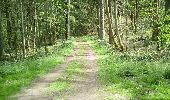 Trail Nordic's walk Ham-sur-Heure-Nalinnes - Norsac H/H lièvres 2 - Photo 1