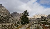 Trail Walk SAINT-MARTIN-VESUBIE - Saleze - lac Negre -pas de Prefounds - nuit refuge Questa - Photo 8