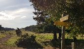 Trail Walk AYDAT - Les trois puys - Photo 14