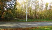 Randonnée Marche SAINT-JEAN-AUX-BOIS - en forêt de Compiègne_32_11_2019_les Tournantes de la Muette et sous la Tête Saint-Jean - Photo 179