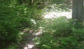 Trail Walk WASSELONNE - Geisweg - Elmerforst -Westhoffen - Photo 27