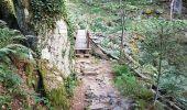 Trail Walk METZERAL - Steinabruck - Le Hohneck et ses 3 lacs Fischboedle, Altenweiher et Schiessrothried - Photo 7