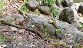 Trail Walk Unknown - 971 Trace du ruisseau - Photo 3