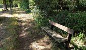 Trail Walk Havelange - De Havelange à Saint Fontaine par le village de Ossogne - Photo 6