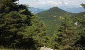 Randonnée Marche PONTIS - Morgon par les Ortals - Photo 9