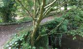 Randonnée Marche PLOUFRAGAN - Bretagne - La Méaugon - Boucle autour du Gouët - Photo 11