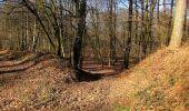 Trail Walk RETHEUIL - en forêt de Retz_76_dans les forêts de Retz et de Compiègne - Photo 142