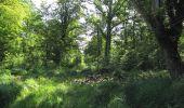 Randonnée Marche LACROIX-SAINT-OUEN - en forêt de Compiègne_35_la Croix Saint-Sauveur_le Ru du Goderu - Photo 6