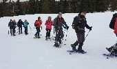Randonnée Raquettes à neige DIVONNE-LES-BAINS - La Dole alt 1676m en raquette - Photo 12