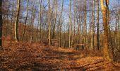 Trail Walk PIERREFONDS - en forêt de Compiègne_24_Tournantes sur le Voliard et sur la Fortelle_chaussée Brunehaut - Photo 64