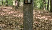 Trail Walk Profondeville - RB-Na-20_Paysages entre Meuse et Burnot - Photo 1