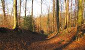 Trail On foot VIEUX-MOULIN - en forêt de Compiègne_23_la Grotte des Ramoneurs_le Mont Berny - Photo 109
