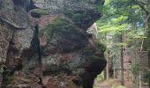 Trail Walk ALLARMONT - 2019-06-08 Marche Allarmont et ses rochers - Photo 14