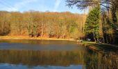Trail On foot VIEUX-MOULIN - en forêt de Compiègne_23_la Grotte des Ramoneurs_le Mont Berny - Photo 41