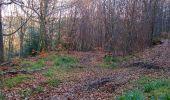 Trail Walk PIERREFONDS - en forêt de Compiègne_24_Tournantes sur le Voliard et sur la Fortelle_chaussée Brunehaut - Photo 100