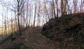 Trail Walk PIERREFONDS - en forêt de Compiègne_24_Tournantes sur le Voliard et sur la Fortelle_chaussée Brunehaut - Photo 102