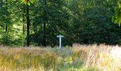 Trail Walk DAMPLEUX - en forêt de Retz_80_sur la Route Tortue et la Route Droite - Photo 180