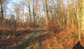 Trail Walk SAINT-JEAN-AUX-BOIS - en forêt de Compiègne_33_12_2019_les Tournantes de l'étang Saint-Jean et des Prés Saint-Jean - Photo 60